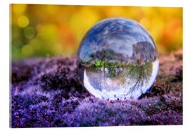 Acrylic print  In the bed of moss - INA FineArt