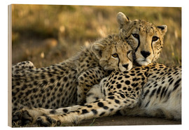Wood  Cheetah cub with mother - Joe & Mary Ann McDonald