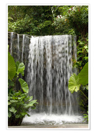 Premium poster  Waterfall in the orchid garden - Cindy Miller Hopkins