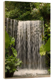 Wood print  Waterfall in the orchid garden - Cindy Miller Hopkins