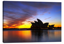 Canvas print  Sydney Opera House in the evening light - David Wall