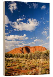 Wood print  Ayers Rock in the Outback - David Wall