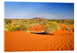 Acrylic print  Outback and Uluru on the horizon - David Wall