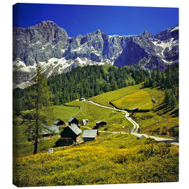 Canvas  A pasture in the Dachstein Alps - Ric Ergenbright