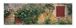 Premium poster  Climbing roses on old stone wall - Ric Ergenbright