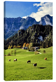 Canvas print  Alpine views with forest and pasture - Ric Ergenbright
