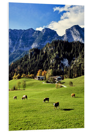 Foam board print  Alpine views with forest and pasture - Ric Ergenbright
