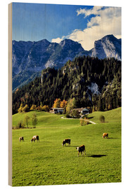 Wood print  Alpine views with forest and pasture - Ric Ergenbright
