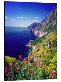 Aluminium print  Cliffs with wildflowers - Ric Ergenbright