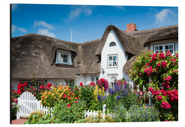 Aluminium print  Amrum - thatched house with flower garden - Reiner Würz