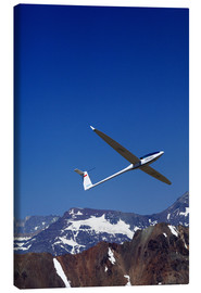 Canvas  Gliding over the snowy mountains - David Wall