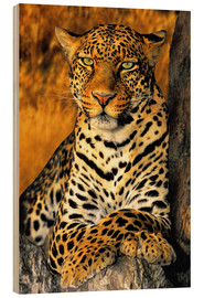 Wood  African Leopard - Dave Welling
