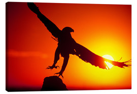 Canvas print  A golden eagle flies at dawn - Dave Welling