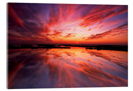 Acrylic print  Red sunset - Jay O'Brien
