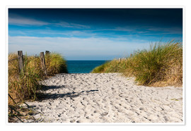 Premium poster  Baltic Sea - path to the beach - Reiner Würz