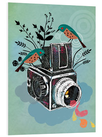 Foam board print  Vintage camera with birds - Elisandra Sevenstar