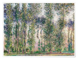 Premium poster  Poplars at Giverny - Claude Monet