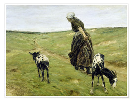 Premium poster  Woman with goats in the dunes - Max Liebermann