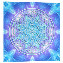 Acrylic print  Flower of Life  - Dolphin Awareness - Dolphins DreamDesign