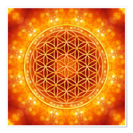 Premium poster  Flower of life - golden age - Dolphins DreamDesign