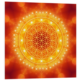 Foam board print  Flower of Life - Golden LightEnergy - Dolphins DreamDesign