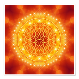 Premium poster  Flower of Life - Golden LightEnergy - Dolphins DreamDesign