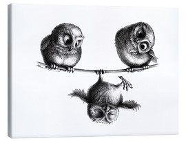 Canvas  Three owls freedom and fun - Stefan Kahlhammer
