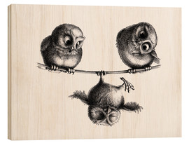 Wood  Three owls freedom and fun - Stefan Kahlhammer