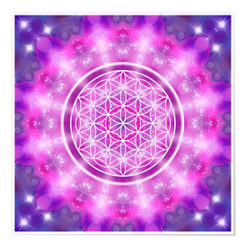 Premium poster  Flower of Life - Love Essence - Dolphins DreamDesign