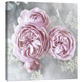 Canvas print  Roses in shabby style - Christine Bässler