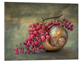 Foam board print  the golden snail - Lizzy Pe