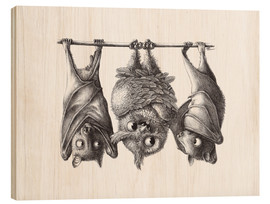 Wood print  Vampire - Owl and Two Bats - Stefan Kahlhammer