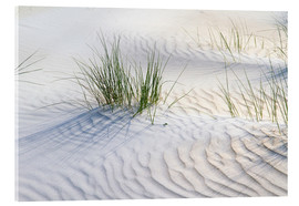 Acrylic print  Dunegrasses in the sand - Jürgen Klust