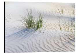 Aluminium print  Dunegrasses in the sand - Jürgen Klust