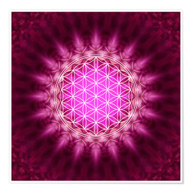 Premium poster  Flower of life - symbol harmony and balance - red - Lava Lova
