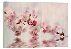 Wood print  Cherry blossoms - Renate Knapp