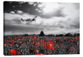 Canvas print  Spitfire poppy pass - airpowerart