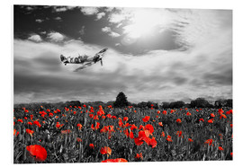 Foam board print  Spitfire poppy pass - airpowerart