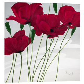 Acrylic print  Poppies swayed by the wind - Franz Heigl