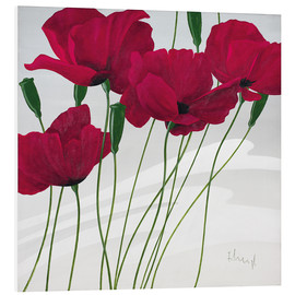Forex  Poppies swayed by the wind - Franz Heigl