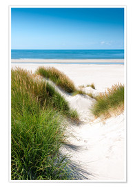 Premium poster North sea dunes
