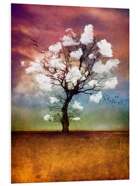 Foam board print  PICK ME A CLOUD II - INA FineArt