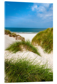 Acrylic print  Seascape with dunes and beach grass - Reiner Würz