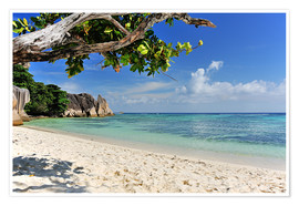 Premium poster  Wonderful Beach of the Seychelles - Jürgen Feuerer