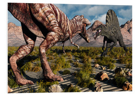 Foam board print  A confrontation between a T. Rex and a Spinosaurus dinosaur - Mark Stevenson