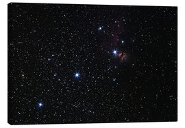 Canvas print  Nebula in Orion's belt - Luis Argerich