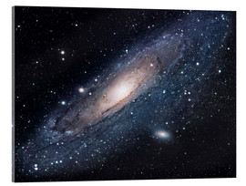 Acrylic print  The andromeda galaxy - Robert Gendler