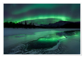 Premium poster  Northern Lights, Norway - Arild Heitmann
