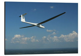 Aluminium print  Glider over the sea - Daniel Karlsson