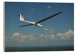 Wood print  Glider over the sea - Daniel Karlsson